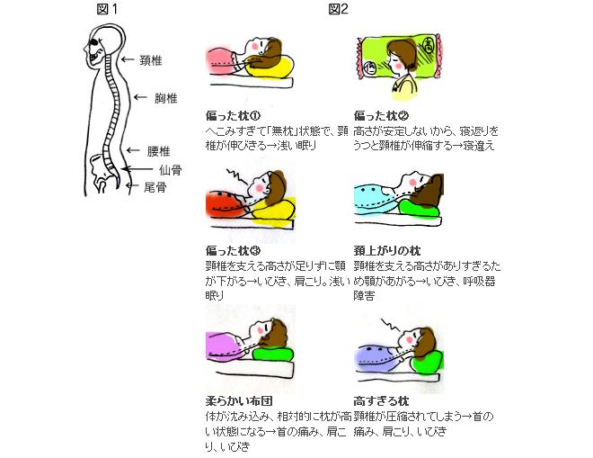 枕と頚について