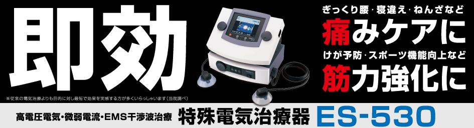 特殊電気治療ES530